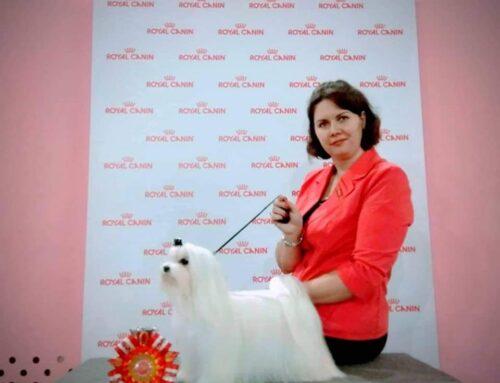 Интернациональная выставка в Воронеже